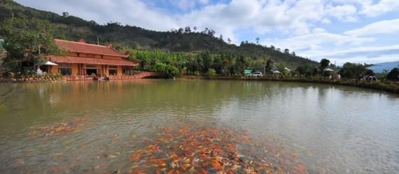Cơ hội hòa mình với thiên nhiên tại Trúc Lâm Viên